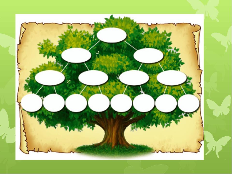Шаблон генеалогическое дерево схема
